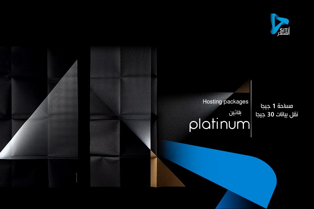 Platinum Bouquet
